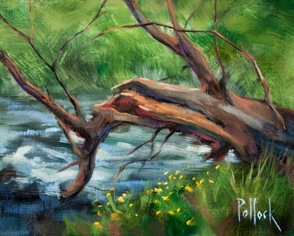 sarah-pollock-spring-creek